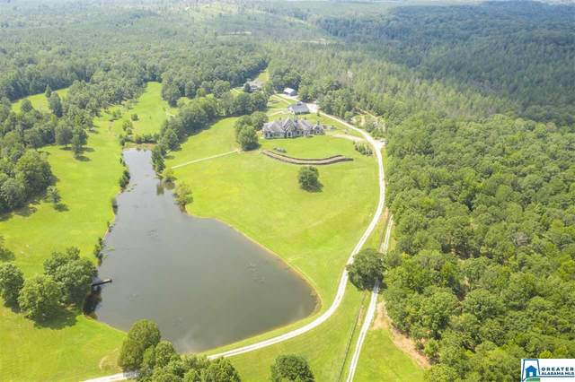 584 Meadow Lake Farms, Calera, AL 35040 (MLS #895121) :: Bentley Drozdowicz Group