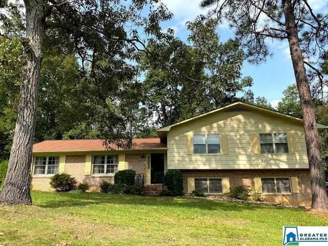 911 Creek Trl, Anniston, AL 36206 (MLS #895160) :: Bentley Drozdowicz Group