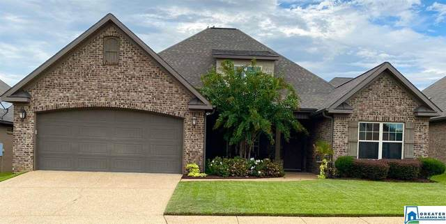 13912 Prince William Way, Northport, AL 35475 (MLS #895516) :: Bailey Real Estate Group