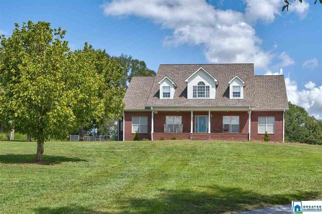 891 Co Rd 538, Hanceville, AL 35077 (MLS #895532) :: Josh Vernon Group
