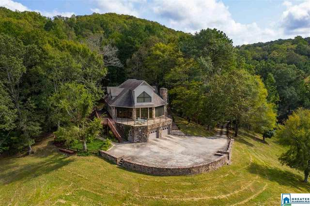 610 Saddleback Rd, Oneonta, AL 35121 (MLS #895672) :: Bailey Real Estate Group
