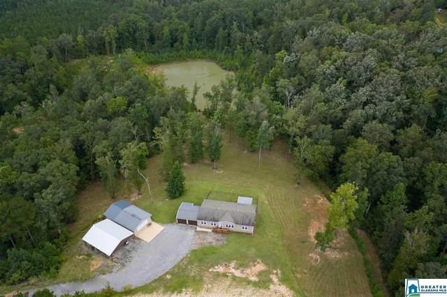 8498 Horseshoe Creek Rd, Cottondale, AL 35453 (MLS #895813) :: Howard Whatley