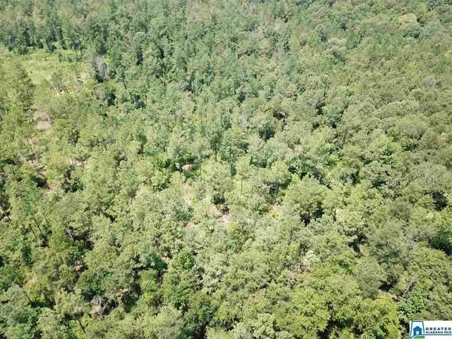 16 Acres Hwy 43 16 Acres, DIXON MILLS, AL 36736 (MLS #896428) :: JWRE Powered by JPAR Coast & County