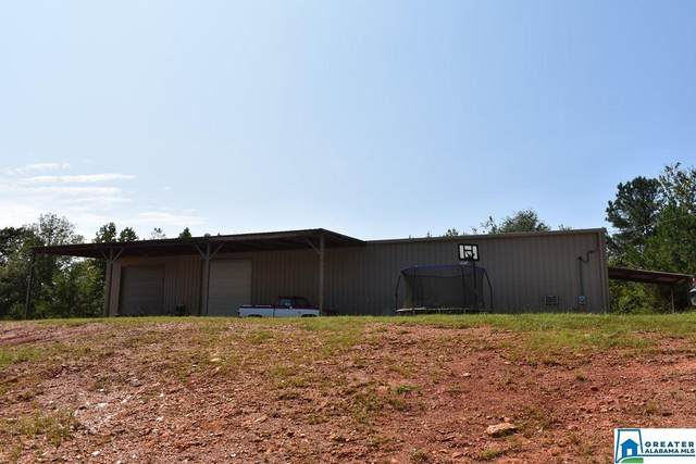 3348 Co Rd 7 #0, Wedowee, AL 36278 (MLS #896458) :: Josh Vernon Group