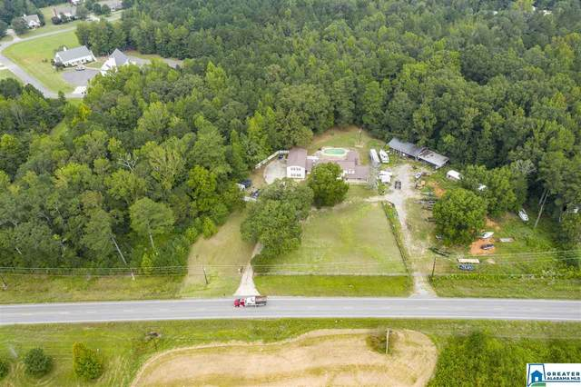12941 US Hwy 411, Odenville, AL 35120 (MLS #896511) :: Josh Vernon Group