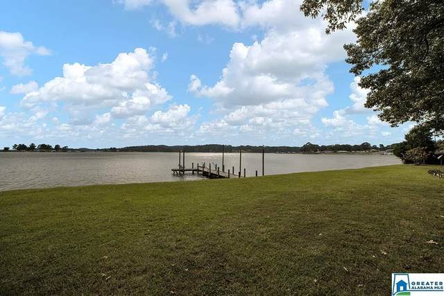 400 Clearwater Point Rd, Cropwell, AL 35054 (MLS #896682) :: Howard Whatley
