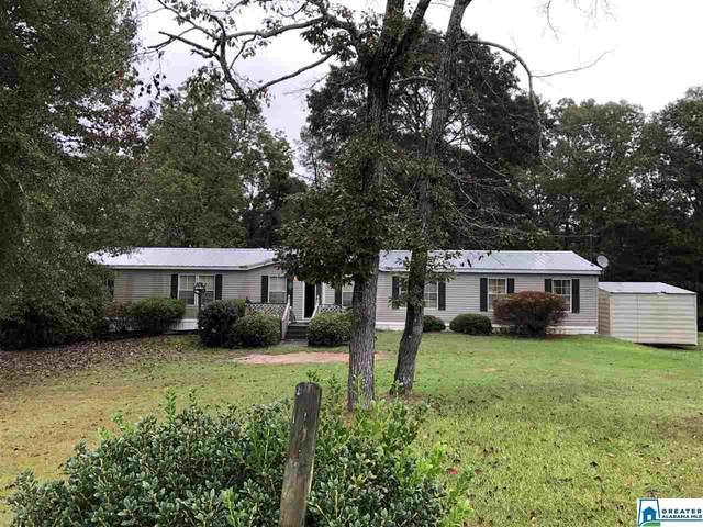 460 George Headley Rd, Locust Fork, AL 35097 (MLS #896691) :: Howard Whatley