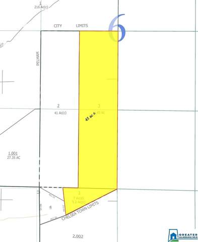Pickle Dr 2 Parcels; Tota, Chelsea, AL 35043 (MLS #896733) :: JWRE Powered by JPAR Coast & County