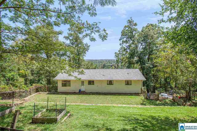 3167 Paradise Acres, Hoover, AL 35244 (MLS #897031) :: Bailey Real Estate Group