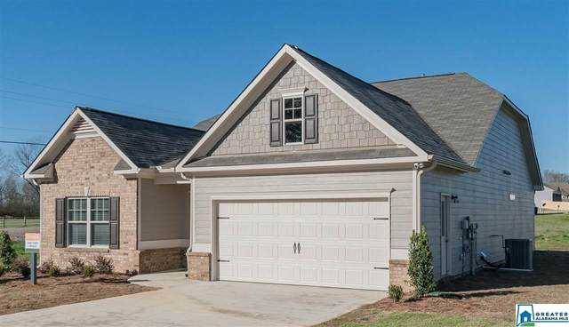 5846 Horizons Pkwy, Pell City, AL 35128 (MLS #897073) :: Bailey Real Estate Group