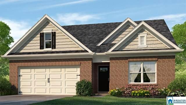 6650 Newbridge Cv, Bessemer, AL 35022 (MLS #897430) :: Bailey Real Estate Group