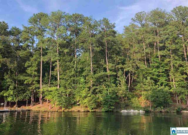 319 Co Rd 2404 #3, Wedowee, AL 36278 (MLS #897432) :: Josh Vernon Group