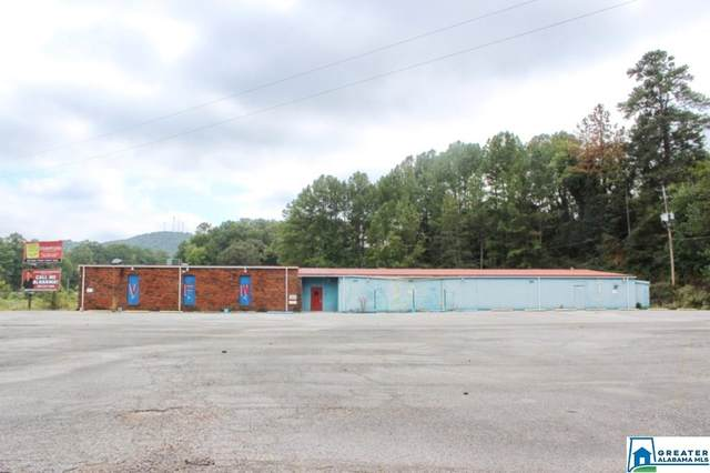 100 Hwy 431, Anniston, AL 36201 (MLS #897574) :: Bentley Drozdowicz Group