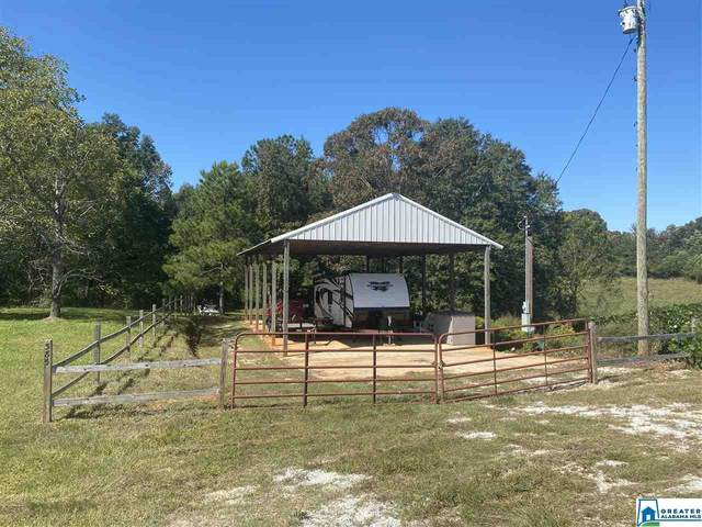 385 Co Rd 29 11 Ac., Wedowee, AL 36278 (MLS #897918) :: Josh Vernon Group