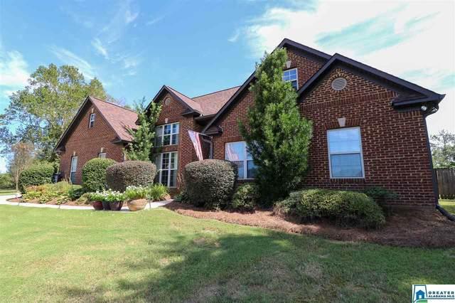 155 Blairs Cir, Pell City, AL 35125 (MLS #898054) :: Bailey Real Estate Group