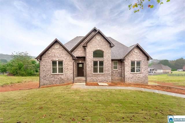 1650 Village Springs Rd, Springville, AL 35146 (MLS #898244) :: LocAL Realty
