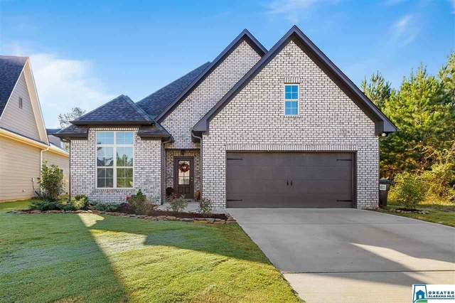 425 Sterling Pl, Odenville, AL 35120 (MLS #898321) :: Bailey Real Estate Group