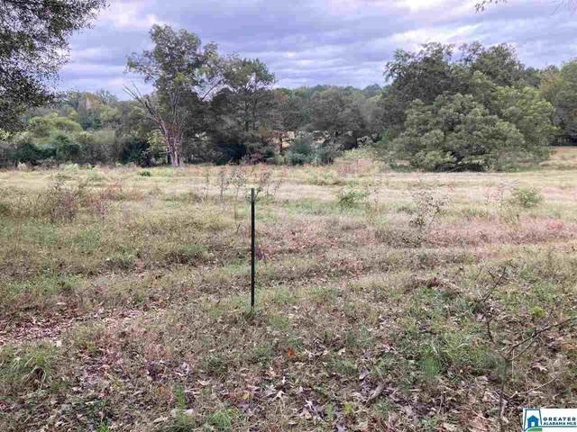 000 Circlewood Dr 14.1 Acres, Brent, AL 35034 (MLS #898397) :: Bentley Drozdowicz Group