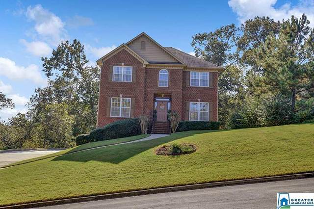 109 Orchard Ln, Helena, AL 35080 (MLS #898746) :: Bailey Real Estate Group