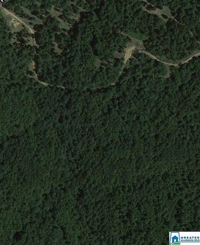 0 Hays Cemetery Rd 7 , 8, Hayden, AL 35079 (MLS #898799) :: Josh Vernon Group