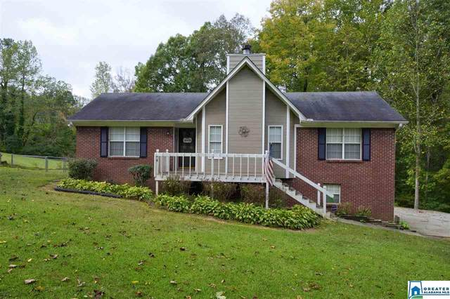 95 Country Rd, Warrior, AL 35079 (MLS #898844) :: Bailey Real Estate Group