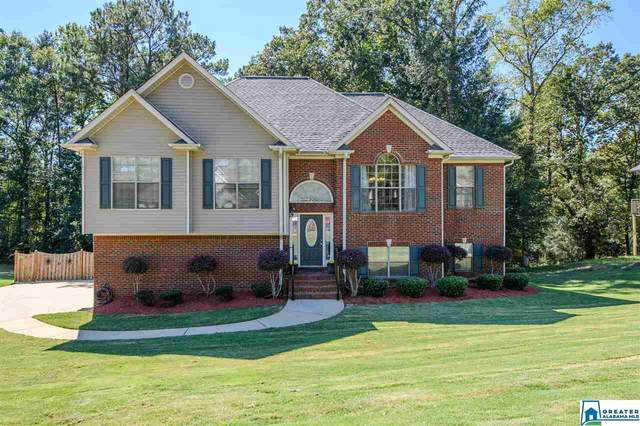 124 Chinaberry Ln, Alabaster, AL 35114 (MLS #898892) :: Sargent McDonald Team