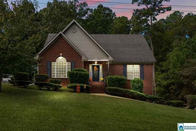 13732 Lisa Dr, LAKE VIEW, AL 35111 (MLS #898951) :: Bailey Real Estate Group