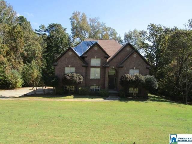 1155 Summit Ridge Way, Odenville, AL 35120 (MLS #899036) :: Josh Vernon Group