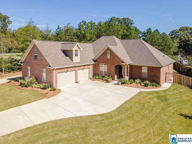4566 Hwy 36, Chelsea, AL 35043 (MLS #899053) :: Josh Vernon Group