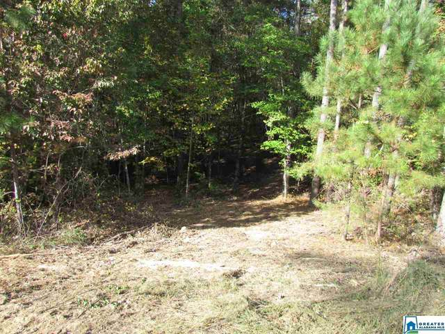Southern Oaks Dr #0, Odenville, AL 35120 (MLS #899152) :: Bentley Drozdowicz Group