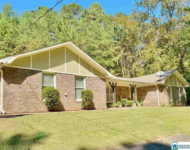 8132 W Hill Rd, Pinson, AL 35126 (MLS #899218) :: Bentley Drozdowicz Group