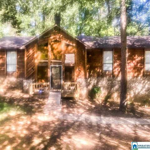 21 Freda Jane Ln, Birmingham, AL 35215 (MLS #899238) :: Gusty Gulas Group