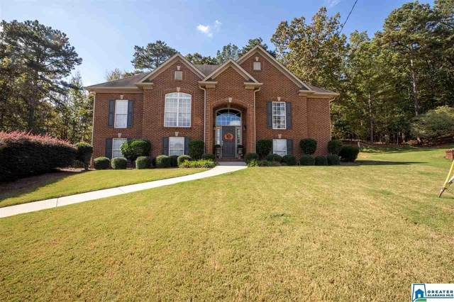 56 Woodbury Dr, Chelsea, AL 35147 (MLS #899322) :: Bailey Real Estate Group