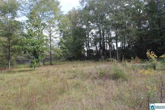 0 Hwy 191 #0, Jemison, AL 35046 (MLS #899365) :: Josh Vernon Group