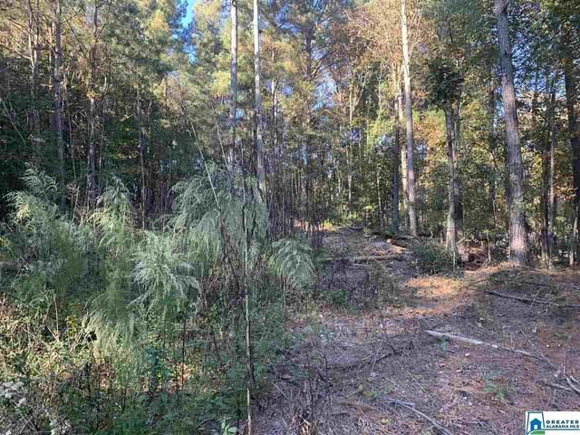 00 Evergreen Rd #1, Springville, AL 35146 (MLS #899370) :: Josh Vernon Group