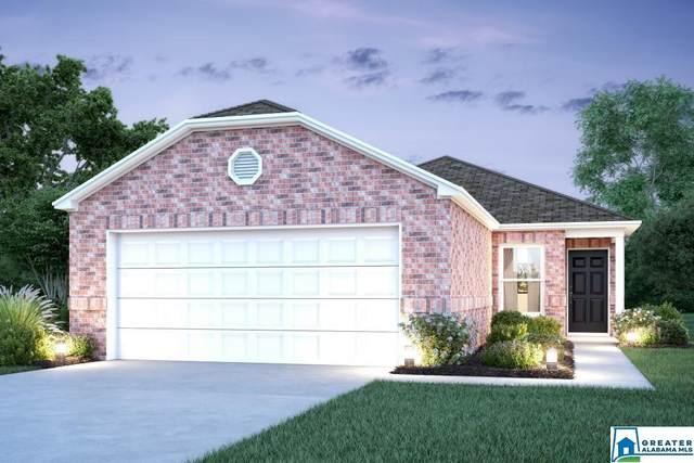 243 Hidden Trace Ct, Montevallo, AL 35115 (MLS #899549) :: Bailey Real Estate Group