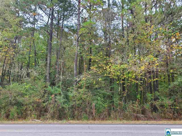 Hwy 11 5.7 Acres, Trussville, AL 35173 (MLS #899579) :: Amanda Howard Sotheby's International Realty