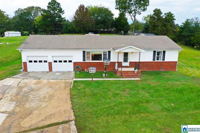 3908 Green Valley Rd, Southside, AL 35907 (MLS #899729) :: Bailey Real Estate Group