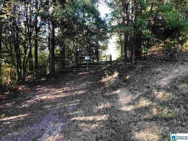 1205 Mulberry Hills Rd #58, Hayden, AL 35079 (MLS #899967) :: Bentley Drozdowicz Group