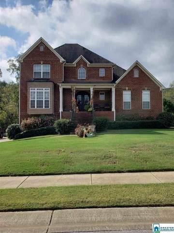 60 Green Briar Ln, Springville, AL 35146 (MLS #899994) :: LocAL Realty