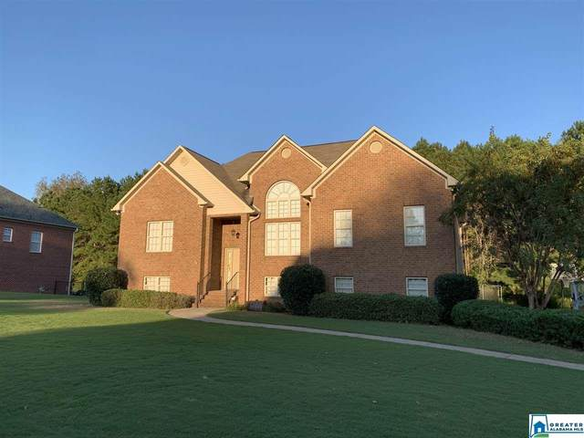 9667 Ridge Way, Kimberly, AL 35091 (MLS #900185) :: LocAL Realty