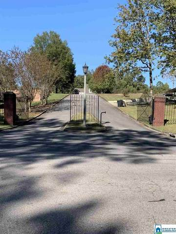 Lot 12 Oak Hill Dr #12, Dora, AL 35062 (MLS #900452) :: Bailey Real Estate Group