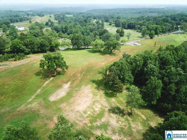 Co Rd 222 Crane Hill Farm, Crane Hill, AL 35053 (MLS #900504) :: Gusty Gulas Group