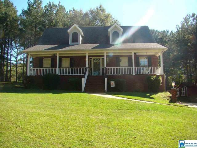 20513 Cathedral Ln, Mccalla, AL 35111 (MLS #900510) :: Sargent McDonald Team