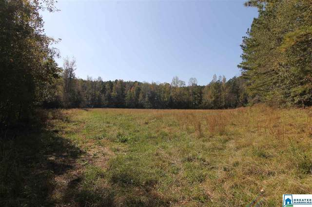 1620 Co Rd 79 241 Ac., Wadley, AL 36276 (MLS #900651) :: LocAL Realty