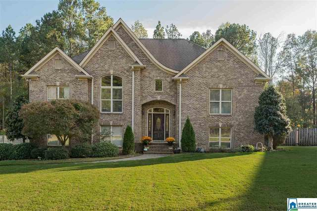 3303 River Birch Trl, Chelsea, AL 35043 (MLS #900687) :: LocAL Realty
