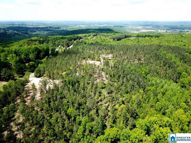 Sandcut Ln Nauvoo Homesite, Nauvoo, AL 35578 (MLS #900789) :: JWRE Powered by JPAR Coast & County