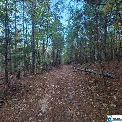 0 Seminole Trl #251, Pell City, AL 35125 (MLS #900819) :: Bailey Real Estate Group