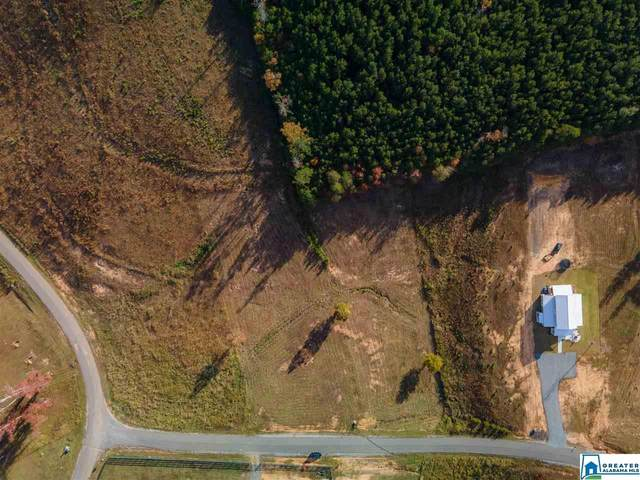 Lot 53 Sipsey Shores Lot 53, Jasper, AL 35504 (MLS #900990) :: JWRE Powered by JPAR Coast & County