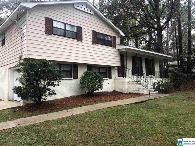 1049 Big Cloud Cir, Alabaster, AL 35007 (MLS #901144) :: LocAL Realty